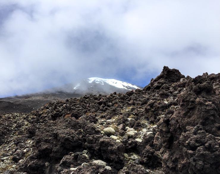 neuseeland tongariro nationalpark blick gipfel