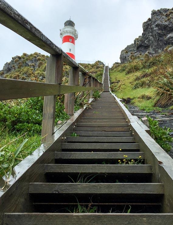 neuseeland treppen cape palliser leuchtturm