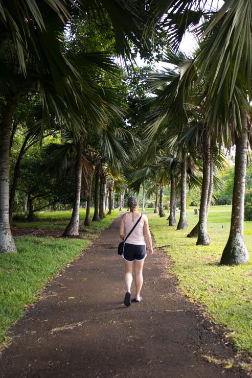 Botanischer Garten Spaziergang