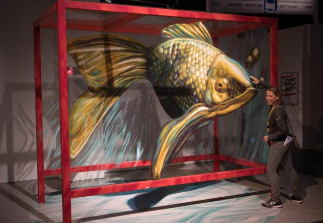 Magic City Fisch
