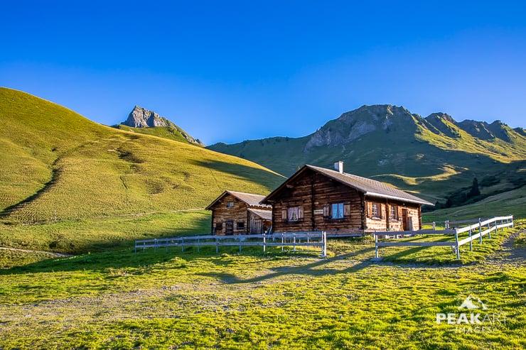 Vordere Grauspitze Almwiesen