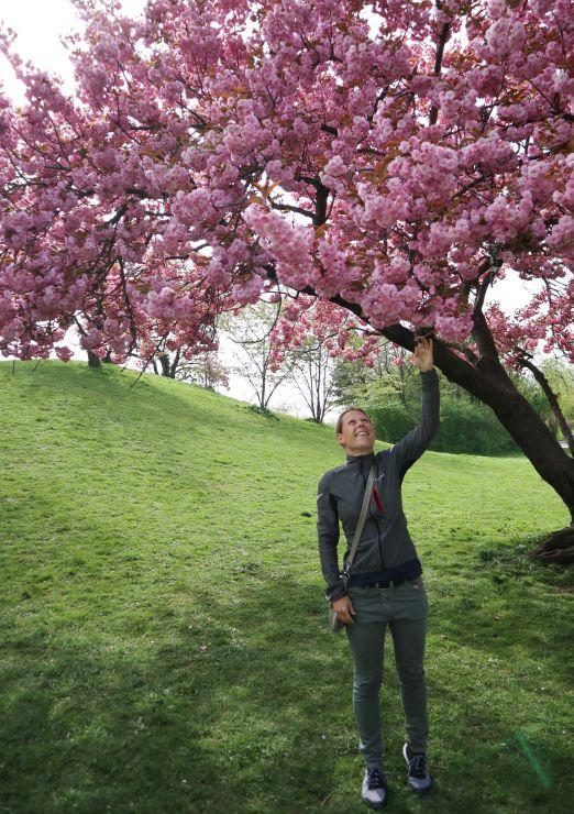 April-Rückblick Frühling