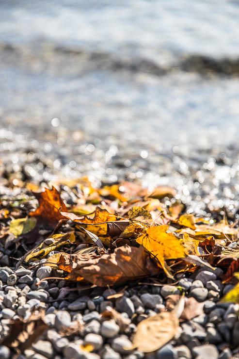 Laufen im Herbst Stärkung Immunsystem