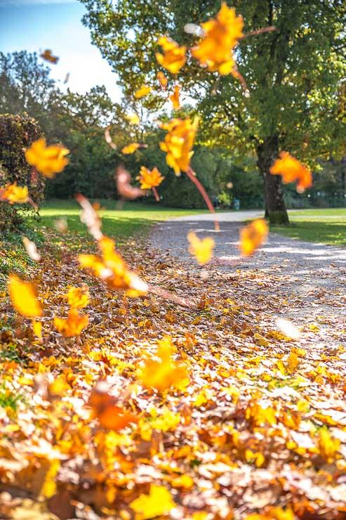 Laufen im Herbst topfit