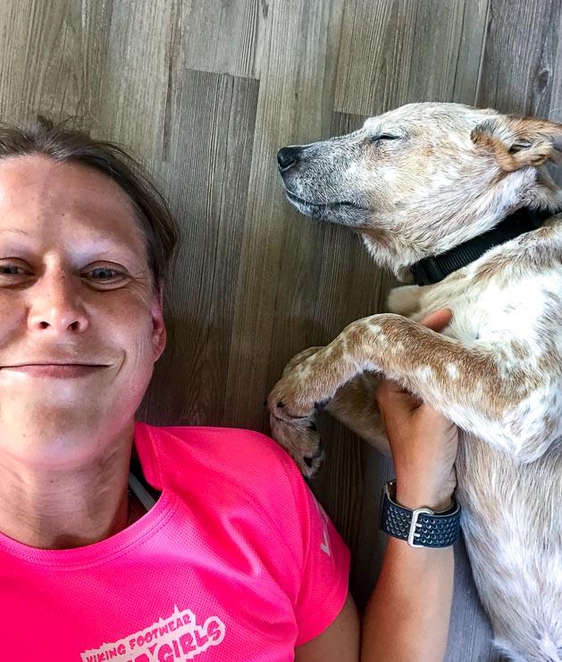 rueckblick 2018 hunde laufen freunde